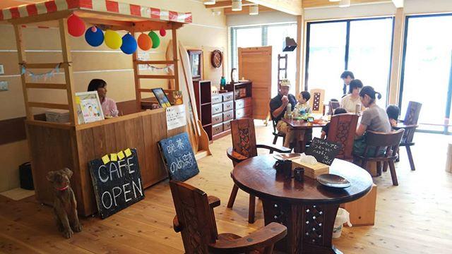 木育カフェ本日14時まで那賀町林業ビジネスセンターでオープンしています!#木育 #つみき #ランプシェード #naka #Tokushima
