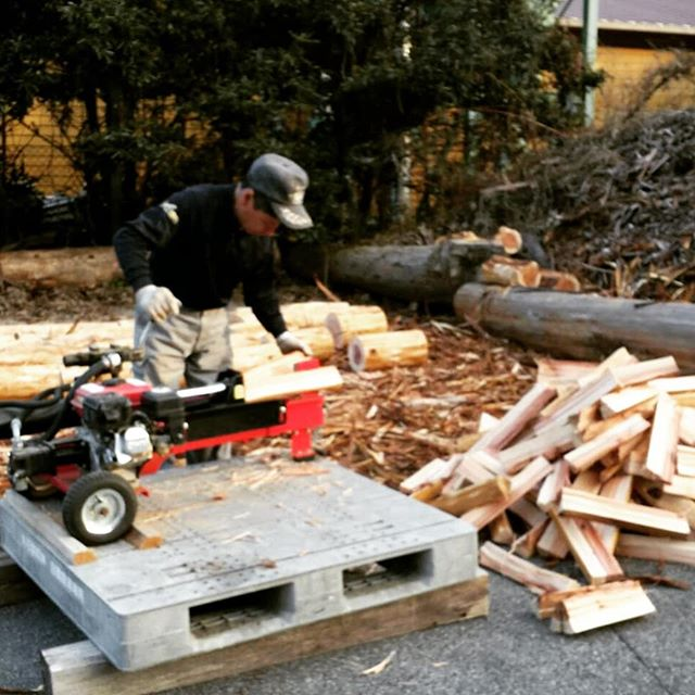 認証木粉ができるまで③ぶつ切りにし、皮を剥いだ原木を薪割り機で分割します。粉砕機に投入するためというのはもちろんですが、こうすることで一気に乾燥が進みます。丸太のままでは乾かない、でもおが粉やチップまで細かくするとこれも乾かない。自然に乾かすには、このサイズなのです🌲 (工場の廃熱を乾燥に利用するなど、エネルギー循環利用も工夫してます) #木粉 #woodpowder #杉 #国産 #地域材 #tokushima #nakawood